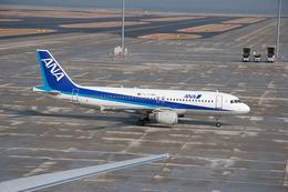 さっしんさんが、中部国際空港で撮影した全日空 A320-211の航空フォト(飛行機 写真・画像)