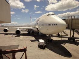 sunpoohさんが、ダニエル・K・イノウエ国際空港で撮影した日本航空 747-446の航空フォト(飛行機 写真・画像)