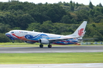 SKYLINEさんが、成田国際空港で撮影した中国国際航空 737-89Lの航空フォト(飛行機 写真・画像)