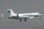Scotchさんが、厚木飛行場で撮影した海上保安庁 G-V Gulfstream Vの航空フォト(写真)