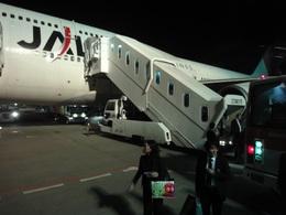 sunpoohさんが、羽田空港で撮影した日本航空 747-446の航空フォト(飛行機 写真・画像)