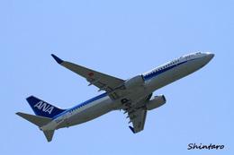 Shintaroさんが、伊丹空港で撮影した全日空 737-881の航空フォト(飛行機 写真・画像)