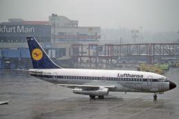 Gambardierさんが、フランクフルト国際空港で撮影したルフトハンザドイツ航空 737-230/Advの航空フォト(飛行機 写真・画像)