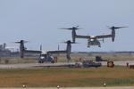 岩国飛行場 - Marine Corps Air Station Iwakuni [RJOI]で撮影されたアメリカ海兵隊 - United States Marine Corpsの航空機写真