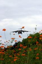 アイスコーヒーさんが、福岡空港で撮影した航空自衛隊 C-1の航空フォト(飛行機 写真・画像)