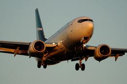 Tomo-Papaさんが、ロサンゼルス国際空港で撮影したウェストジェット 737-7CTの航空フォト(飛行機 写真・画像)