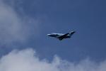 たまさんが、松戸駐屯地で撮影した航空自衛隊 U-125A(Hawker 800)の航空フォト(写真)