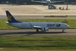 アイスコーヒーさんが、羽田空港で撮影したスカイマーク 737-8HXの航空フォト(飛行機 写真・画像)