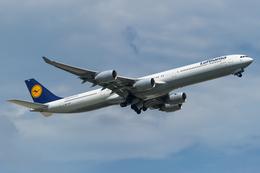 yoshioyajiさんが、成田国際空港で撮影したルフトハンザドイツ航空 A340-642の航空フォト(飛行機 写真・画像)