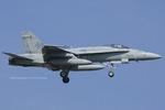 Scotchさんが、岩国空港で撮影したアメリカ海軍 F/A-18C Hornetの航空フォト(写真)