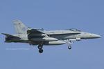 Scotchさんが、岩国空港で撮影したアメリカ海兵隊 F/A-18C Hornetの航空フォト(写真)