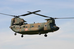 アイスコーヒーさんが、木更津飛行場で撮影した陸上自衛隊 CH-47JAの航空フォト(写真)