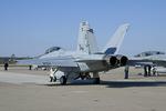 Scotchさんが、オシアナ海軍航空基地アポロソーセックフィールドで撮影したアメリカ海軍 F/A-18F Super Hornetの航空フォト(写真)