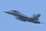 Scotchさんが、オシアナ海軍航空基地アポロソーセックフィールドで撮影したアメリカ海軍 F/A-18F Super Hornetの航空フォト(飛行機 写真・画像)