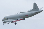 Scotchさんが、岩国空港で撮影した海上自衛隊 OP-3Cの航空フォト(写真)
