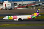パンダさんが、羽田空港で撮影したスカイネットアジア航空 737-43Qの航空フォト(飛行機 写真・画像)