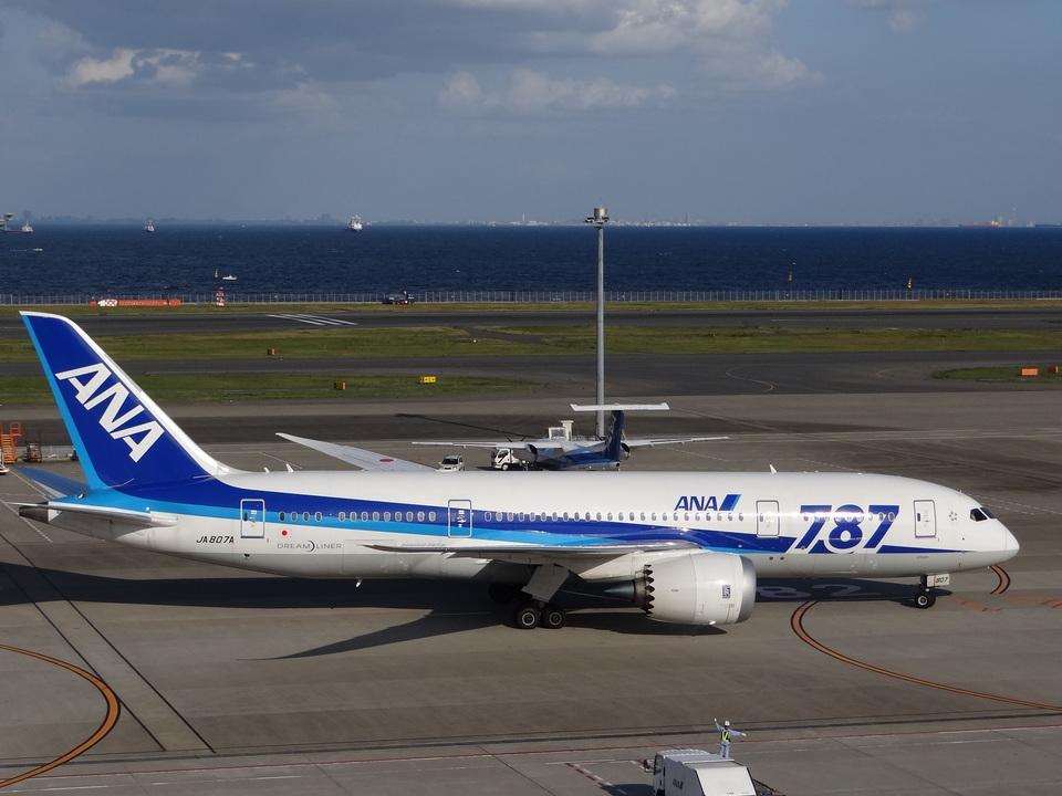 Dreamer-K'さんの全日空 Boeing 787-8 Dreamliner (JA807A) 航空フォト