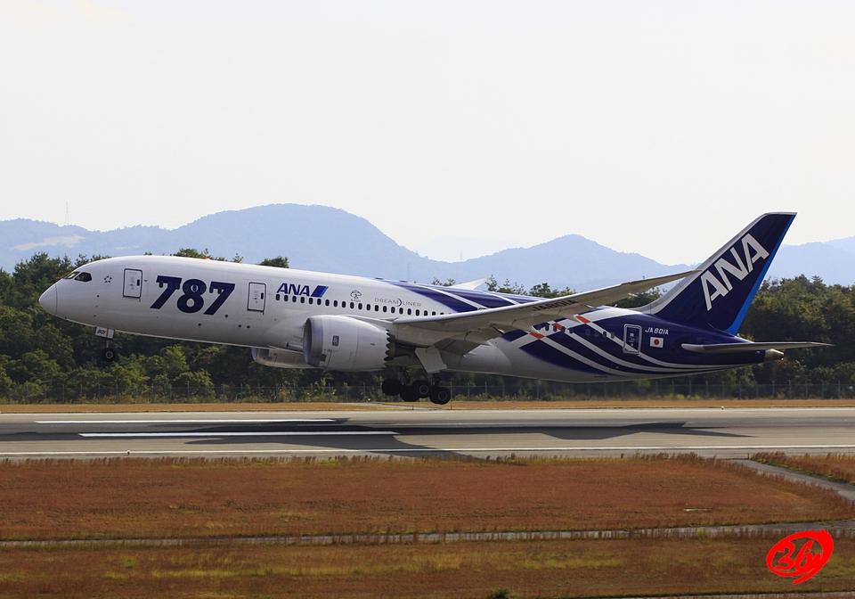 036さんの全日空 Boeing 787-8 Dreamliner (JA801A) 航空フォト