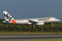 PINK_TEAM78さんが、成田国際空港で撮影したジェットスター・ジャパン A320-232の航空フォト(飛行機 写真・画像)