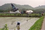 福岡空港 - Fukuoka Airport [FUK/RJFF]で撮影されたガルーダ・インドネシア航空 - Garuda Indonesia [GA/GIA]の航空機写真