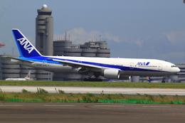 エアポートひたちさんが、羽田空港で撮影した全日空 777-281の航空フォト(飛行機 写真・画像)