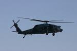アイスコーヒーさんが、入間飛行場で撮影した航空自衛隊 UH-60Jの航空フォト(写真)