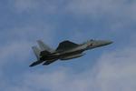 アイスコーヒーさんが、入間飛行場で撮影した航空自衛隊 F-15J Eagleの航空フォト(写真)