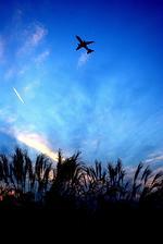 rjnsphotoclub-No.07さんが、静岡空港で撮影したフジドリームエアラインズ ERJ-170-100 (ERJ-170STD)の航空フォト(写真)