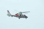 パンダさんが、広島空港で撮影した広島市消防航空隊 AS365N3 Dauphin 2の航空フォト(飛行機 写真・画像)