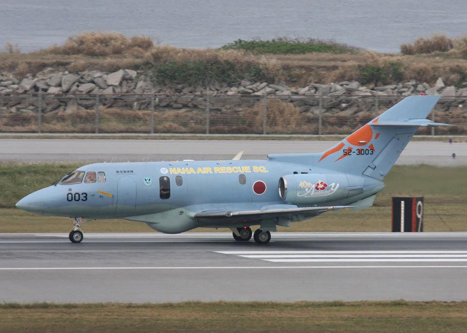 SGHGさんの航空自衛隊 British Aerospace BAe-125/HS-125 (C-29) (52-3003) 航空フォト