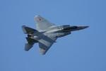 しんさんが、岐阜基地で撮影した航空自衛隊 F-15DJ Eagleの航空フォト(写真)