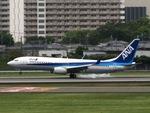 aquaさんが、伊丹空港で撮影した全日空 737-881の航空フォト(飛行機 写真・画像)