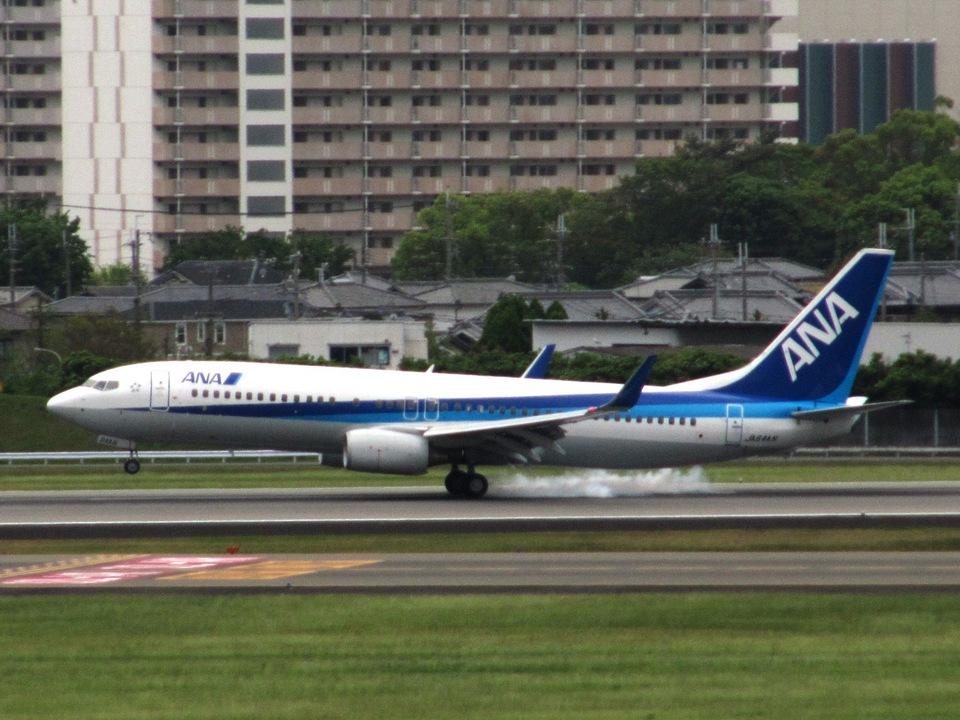 aquaさんの全日空 Boeing 737-800 (JA64AN) 航空フォト
