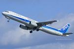 Scotchさんが、名古屋飛行場で撮影した全日空 A321-131の航空フォト(写真)