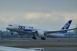 santaさんが、シアトル タコマ国際空港で撮影した全日空 787-8 Dreamlinerの航空フォト(飛行機 写真・画像)