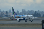 シアトル タコマ国際空港 - Seattle–Tacoma International Airport [SEA/KSEA]で撮影されたアラスカ航空 - Alaska Airlines [AS/ASA]の航空機写真