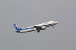 chalk2さんが、羽田空港で撮影した全日空 A320-211の航空フォト(写真)