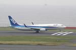 chalk2さんが、羽田空港で撮影した全日空 737-881の航空フォト(写真)