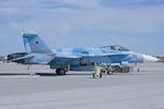Scotchさんが、ファロン海軍航空ステーションで撮影したアメリカ海軍 F/A-18C Hornetの航空フォト(写真)