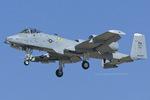 Scotchさんが、ファロン海軍航空ステーションで撮影したアメリカ空軍 A-10C Thunderbolt IIの航空フォト(飛行機 写真・画像)