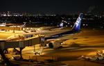 伊丹空港 - Osaka International Airport [ITM/RJOO]で撮影された全日空 - All Nippon Airways [NH/ANA]の航空機写真