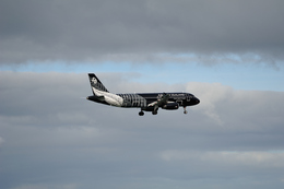 SINTRAさんが、オークランド国際空港で撮影したニュージーランド航空 A320-232の航空フォト(飛行機 写真・画像)