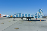 Scotchさんが、ファロン海軍航空ステーションで撮影したアメリカ海軍 F-5E Tiger IIの航空フォト(写真)