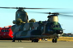 rjnsphotoclub-No.07さんが、浜松基地で撮影した航空自衛隊 CH-47J/LRの航空フォト(写真)