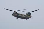 しんさんが、熊谷基地で撮影した航空自衛隊 CH-47J/LRの航空フォト(写真)