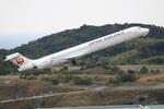 turt@かめちゃんさんが、南紀白浜空港で撮影した日本航空 MD-90-30の航空フォト(写真)