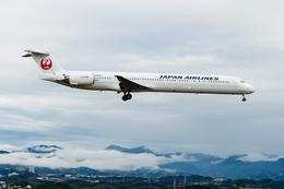 うえぽんさんが、南紀白浜空港で撮影した日本航空 MD-90-30の航空フォト(写真)