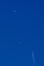 rjnsphotoclub-No.07さんが、浜松基地で撮影した全日空 787-8 Dreamlinerの航空フォト(写真)