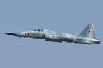 Scotchさんが、ファロン海軍航空ステーションで撮影したアメリカ海軍 F-5N Tiger IIの航空フォト(飛行機 写真・画像)