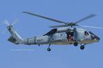 Scotchさんが、ファロン海軍航空ステーションで撮影したアメリカ海軍 SH-60F Seahawk (S-70B-4)の航空フォト(飛行機 写真・画像)